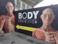 Body The Exhibition – výstava, která Ti změní život…