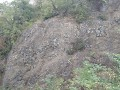 Čedičové sloupce v kráteru sopky